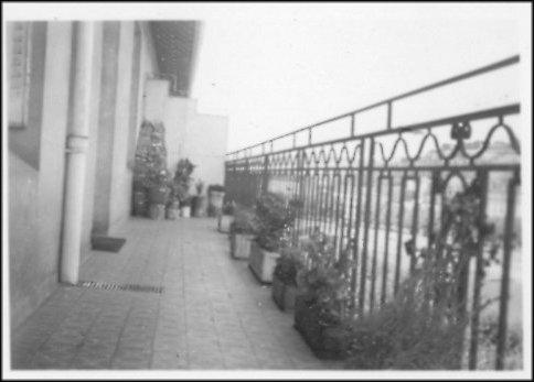 Lyon 1938, cliché n°3