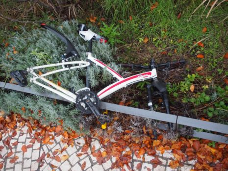 Vélo mangé par les plantes