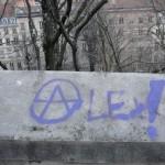 alex-8751