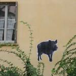 animaux-en-ville-3113