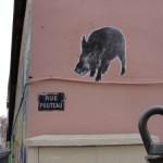 animaux-en-ville-3121