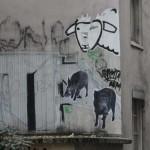 animaux-en-ville-3245