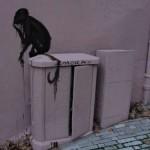 animaux-en-ville-3580