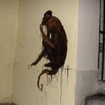 animaux-en-ville-3583