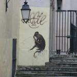 animaux-en-ville-3928