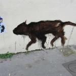 animaux-en-ville-4025