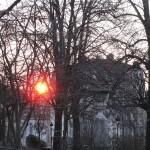 aube-rousse-1214