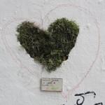 avant-javais-un-coeur-en-pierre-maintenant-un-coeur-de-nounours-6986