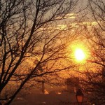 bonjour-soleil-5530