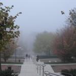 brouillard-croix-roussien-9809