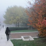 brouillard-croix-roussien-9810