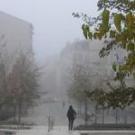 brouillard-croix-roussien-9811