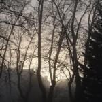 cauchemar-versus-pollution-et-vice-versa-4445