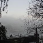 cauchemar-versus-pollution-et-vice-versa-4519