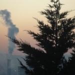 cauchemar-versus-pollution-et-vice-versa-4582