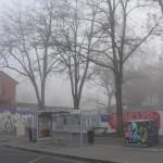 cauchemar-versus-pollution-et-vice-versa4443