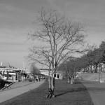 convivialite-urbaine-7019