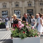 de-rose-en-roses-3943