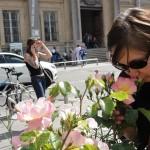 de-rose-en-roses-3947