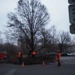 des-hommes-rouges-et-un-arbre-noir-0132