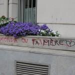 graffitis-de-revolte-0717