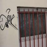 graffitis-dromadaire-pcx-61-9208