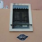 graffitis-papiers-6930
