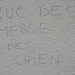 graffitis-pcx-41-3807