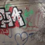 graffitis-pcx-51-6242