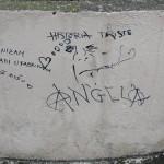 graffitis-poelitiques-9263
