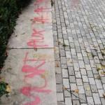 graffitis-politiques-de-saison-5045
