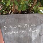graffitis-rigolos-9858