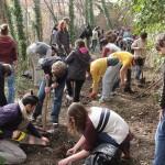 inauguration-jardin-collectif-rue-du-bon-pasteur-2219