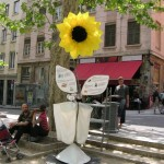 la plus belle fleur du monde est à la Croix-Rousse