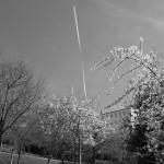 le-blanc-ce-nest-pas-noir-2913
