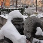 le-printemps-en-hiver-pcx-44-4438
