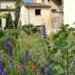 les-couleurs-de-ma-ville-cinquieme-arrondissement-1350