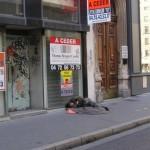 les-gens-de-la-rue-0599
