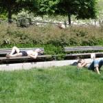 les-gens-dorment-pcx-61-9172