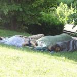 les-gens-dorment-pcx-63-9924