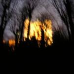 Fourvière en feu