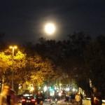 lune-7112