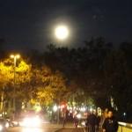 lune-7114