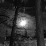 ma-lune-7726