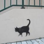 nos-chats-sont-noirs-comme-le-fameux-drapeau-de-nos-aieuls-7135