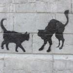 nos-chats-sont-noirs-comme-le-fameux-drapeau-de-nos-aieuls-7136