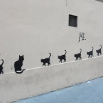 nos-chats-sont-noirs-comme-le-fameux-drapeau-de-nos-aieuls7141