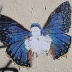 oiseau-papillon-2813