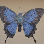 oiseau-papillon-2967