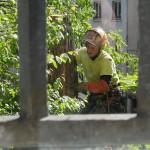 on-acheve-bien-en-arbre-0213